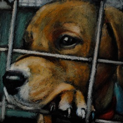 Huff - anactofdog.org art graciously provided please support them! This is a real dog that was killed.